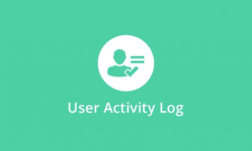 User Activity Log PRO